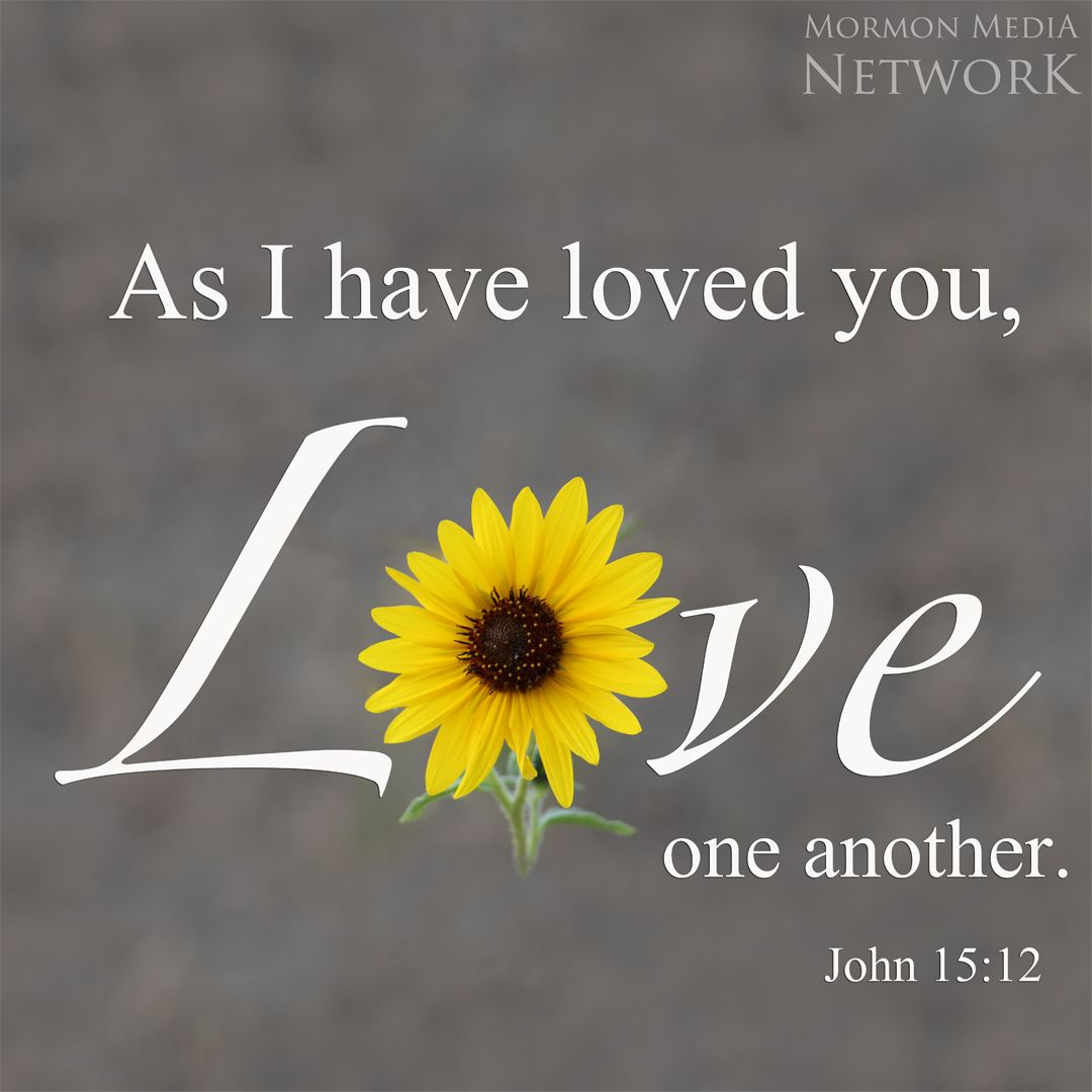 Love One Another Image By Paddy O Fernachur Lds Quotes Inspirational Thoughts Thoughts Quotes
