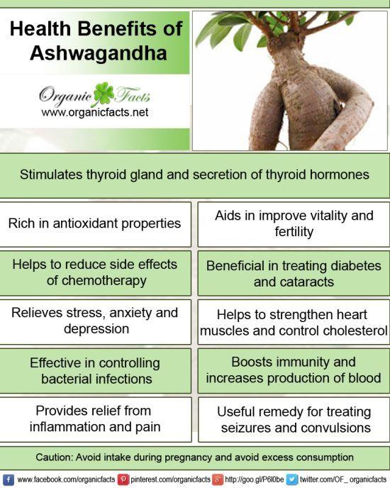 Shilajit Benefits And Side Effects In Hindi Pdf