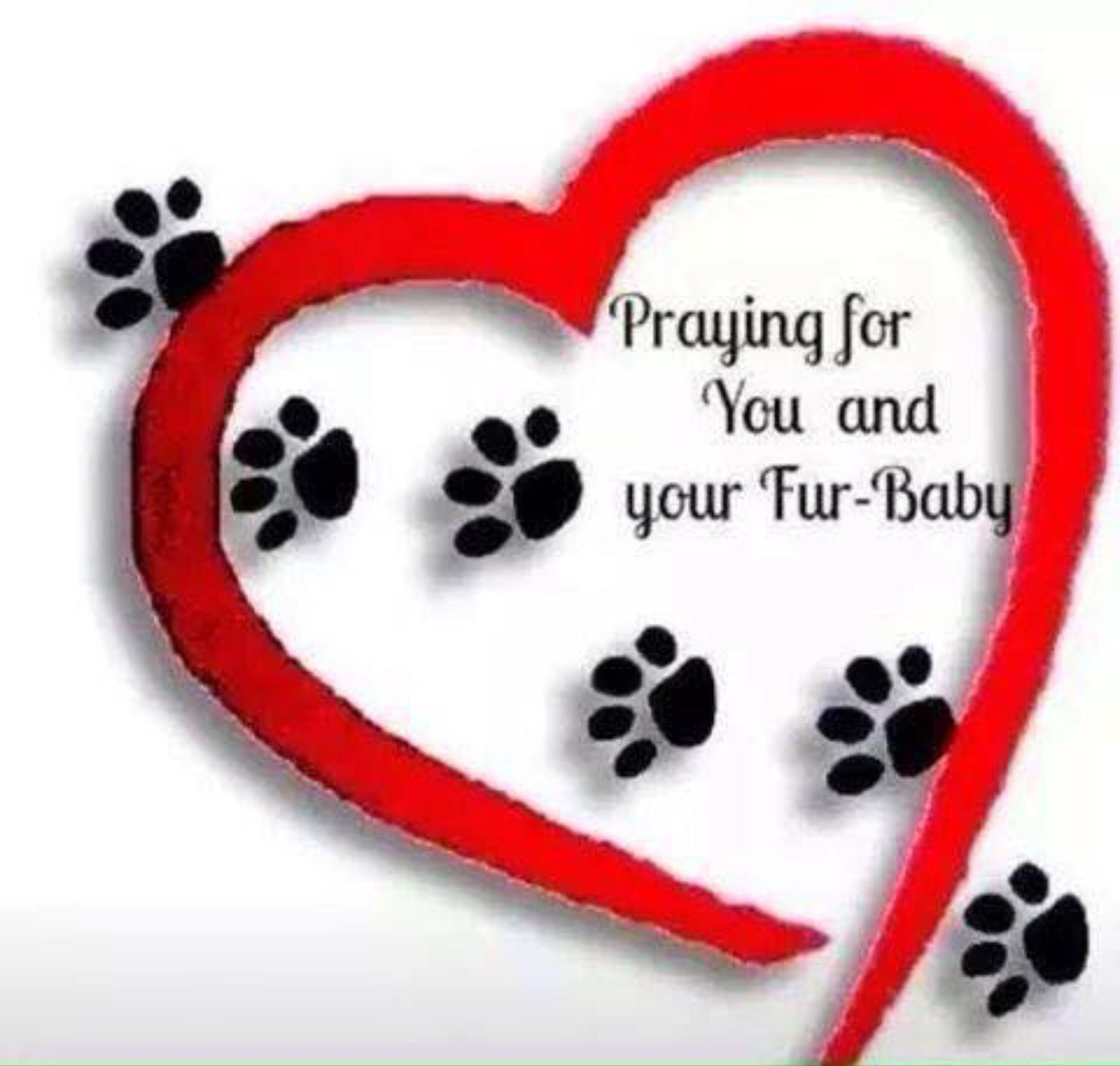 Love Our Fur Babies Sick Pets Prayer For Sick Dog Prayer For Baby
