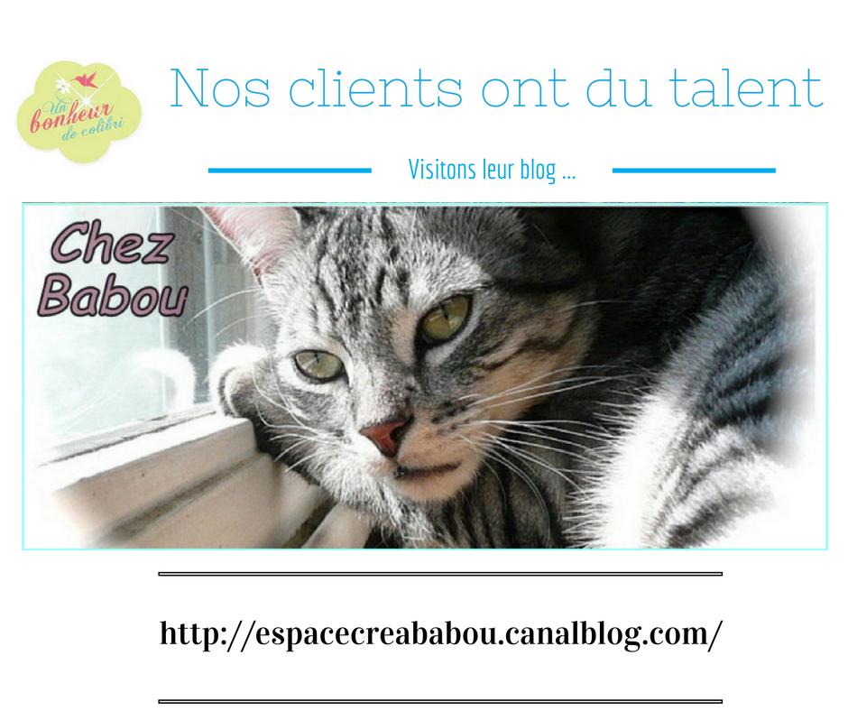 Le Blog de Babou