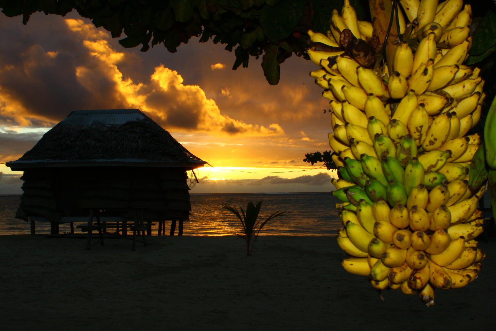 Photograph samoan sunrise by adrian paul on 500px
