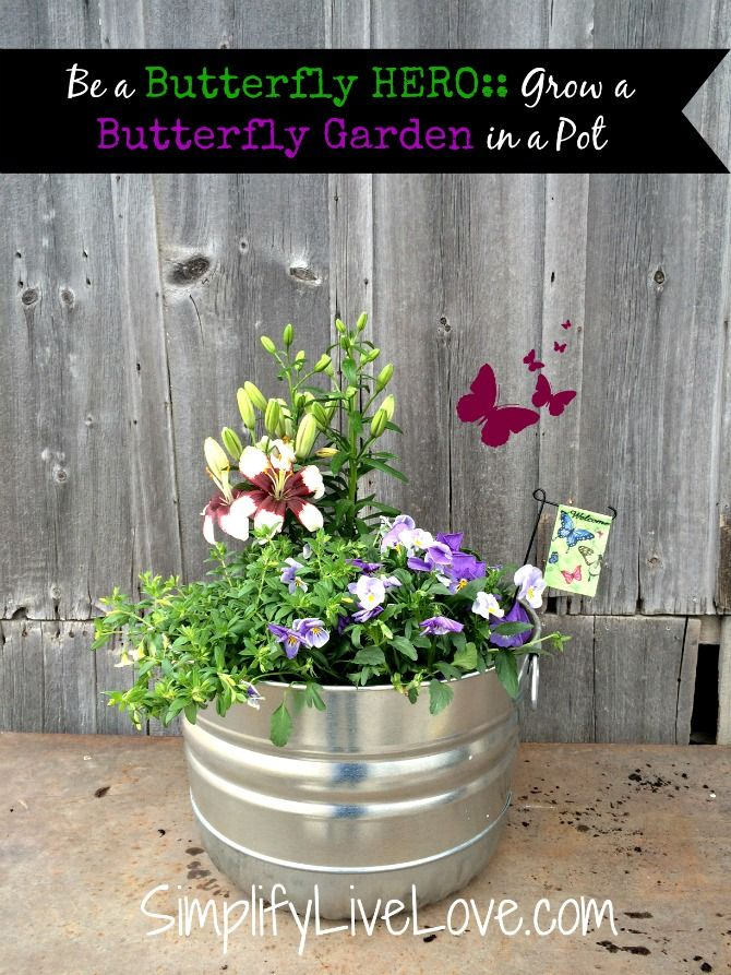 Be A Butterfly Hero Grow A Butterfly Garden In A P*T 400 x 300
