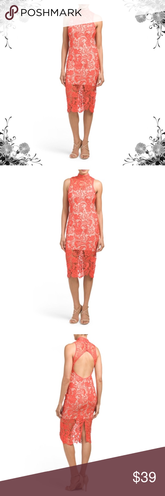 Latiste illusion lace dress sheer lace overlay openback partially