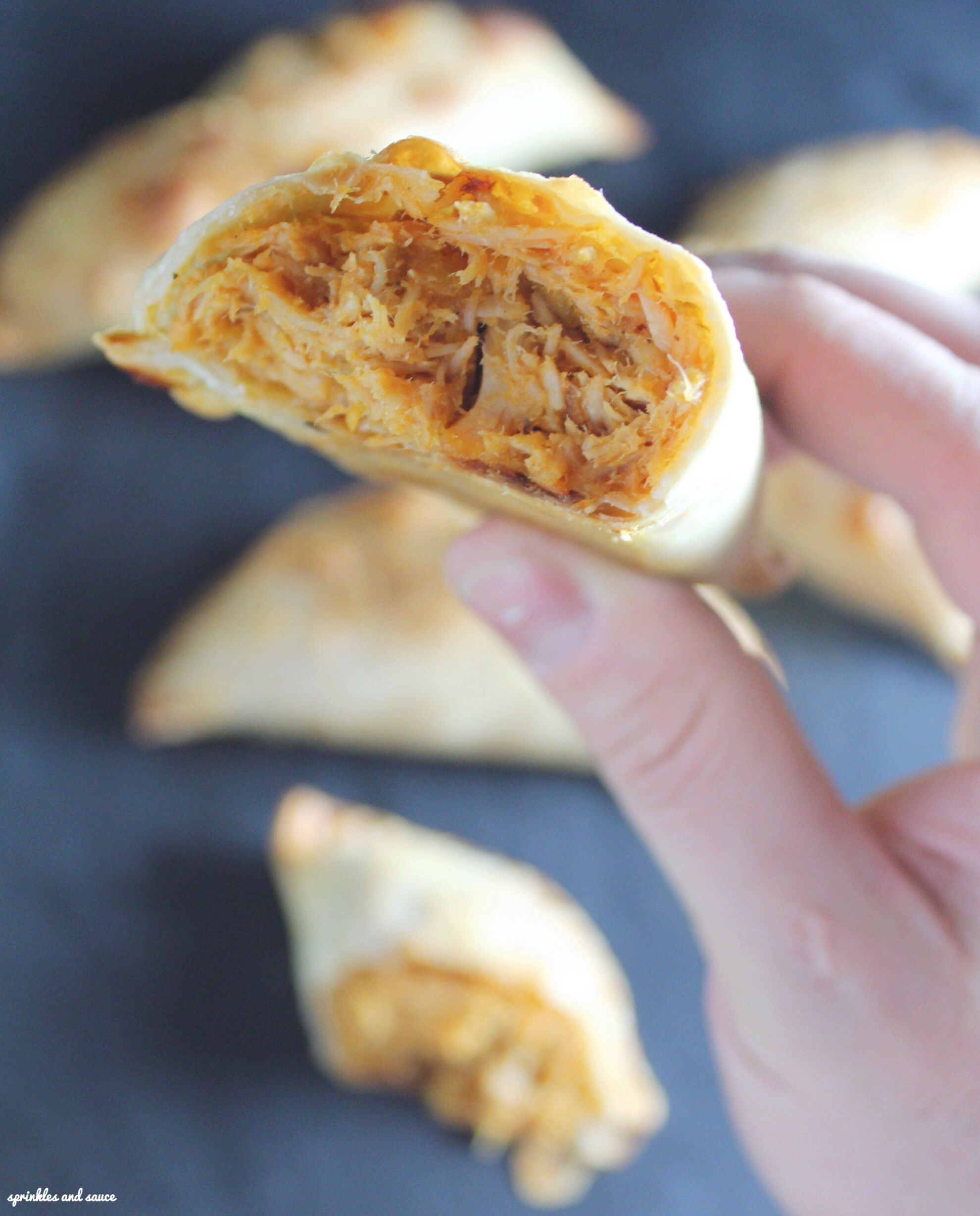 Pulled Pork with Mango Empanada
