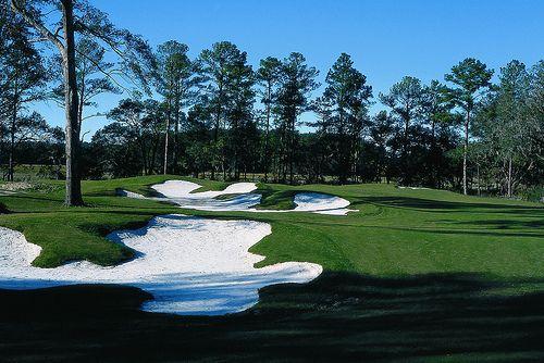 38+ Best golf hilton head south carolina ideas in 2021