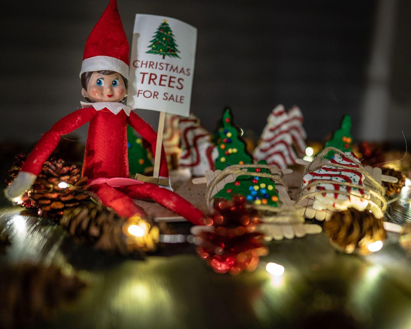 Elf on the shelf idea - Elf on a shelf Little Debbie ...
