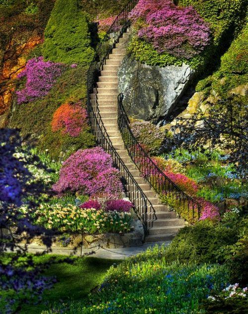 Schöner Garten Elegant Arrangiert Gartengestaltung Baumkronen