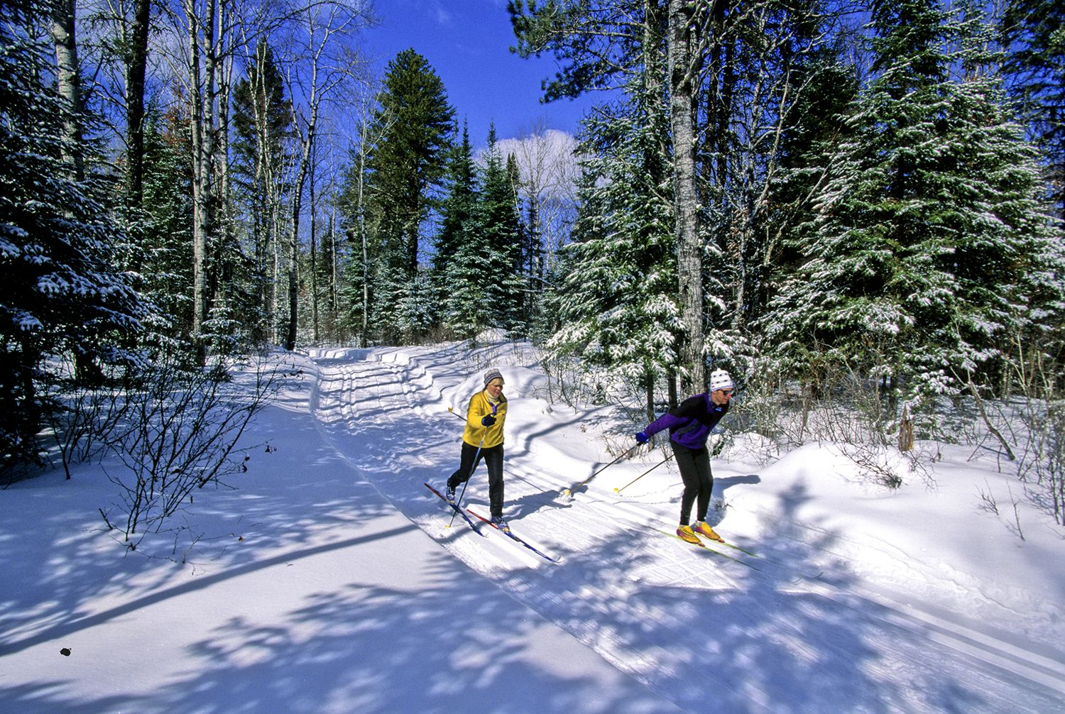 Winter is a great time to enjoy snow shoeing, cross country skiing, and the wildlife viewing in winter is exceptional. Description from sonnenhofbedandbreakfast.com. I searched for this on bing.com/images