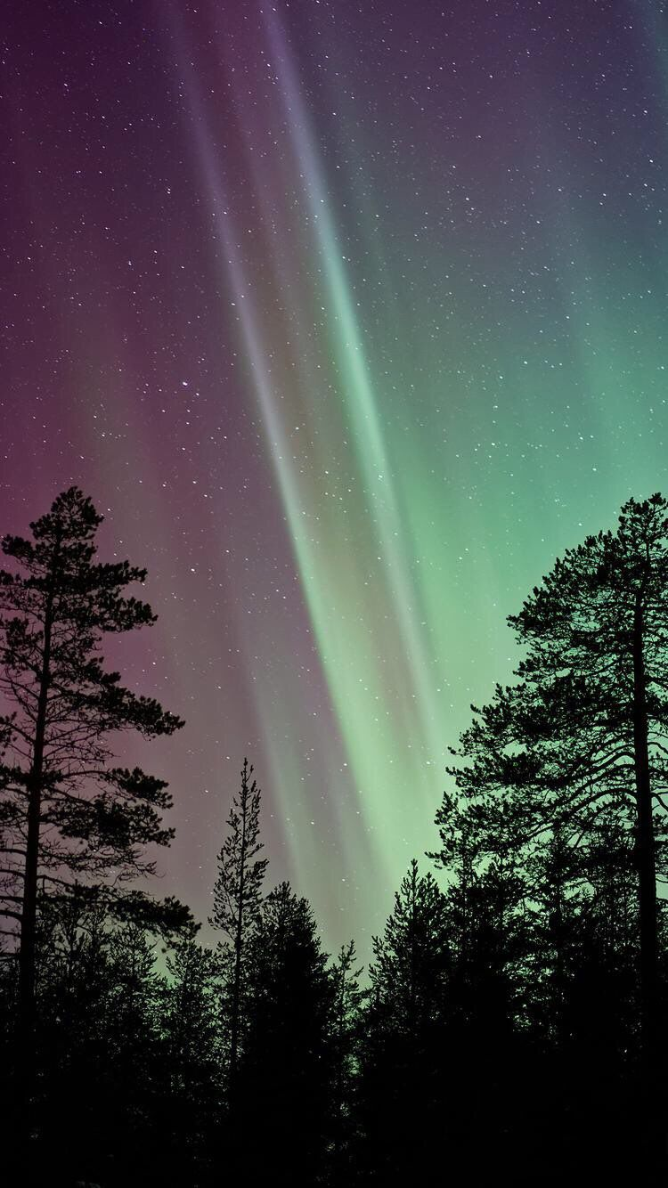 Iphone And Android Wallpapers Northern Lights Wallpaper For Iphone And Android Northern Lights Wallpaper Northern Lights Wallpaper Iphone Northern Lights