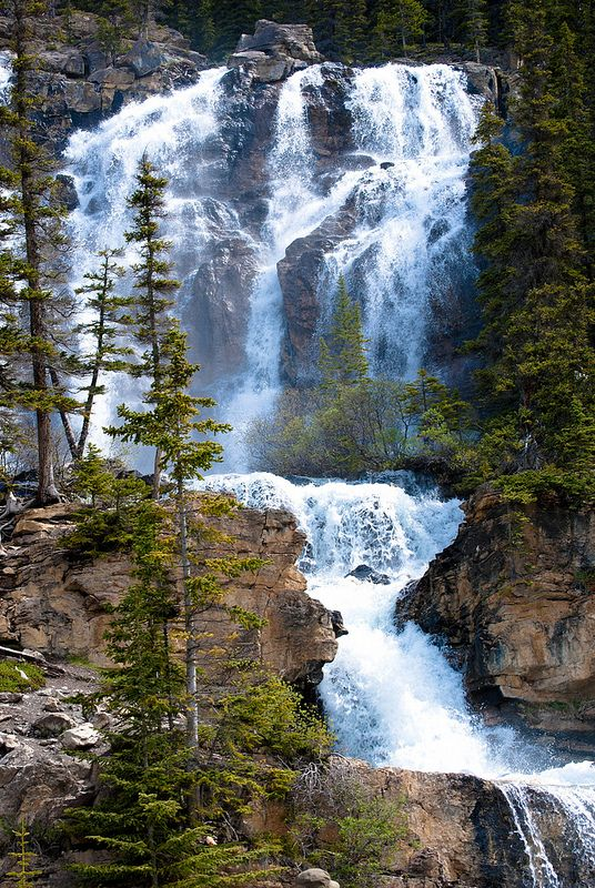 Waterfall, Jasper National Park,  Alberta, Canada by Mel McNamee