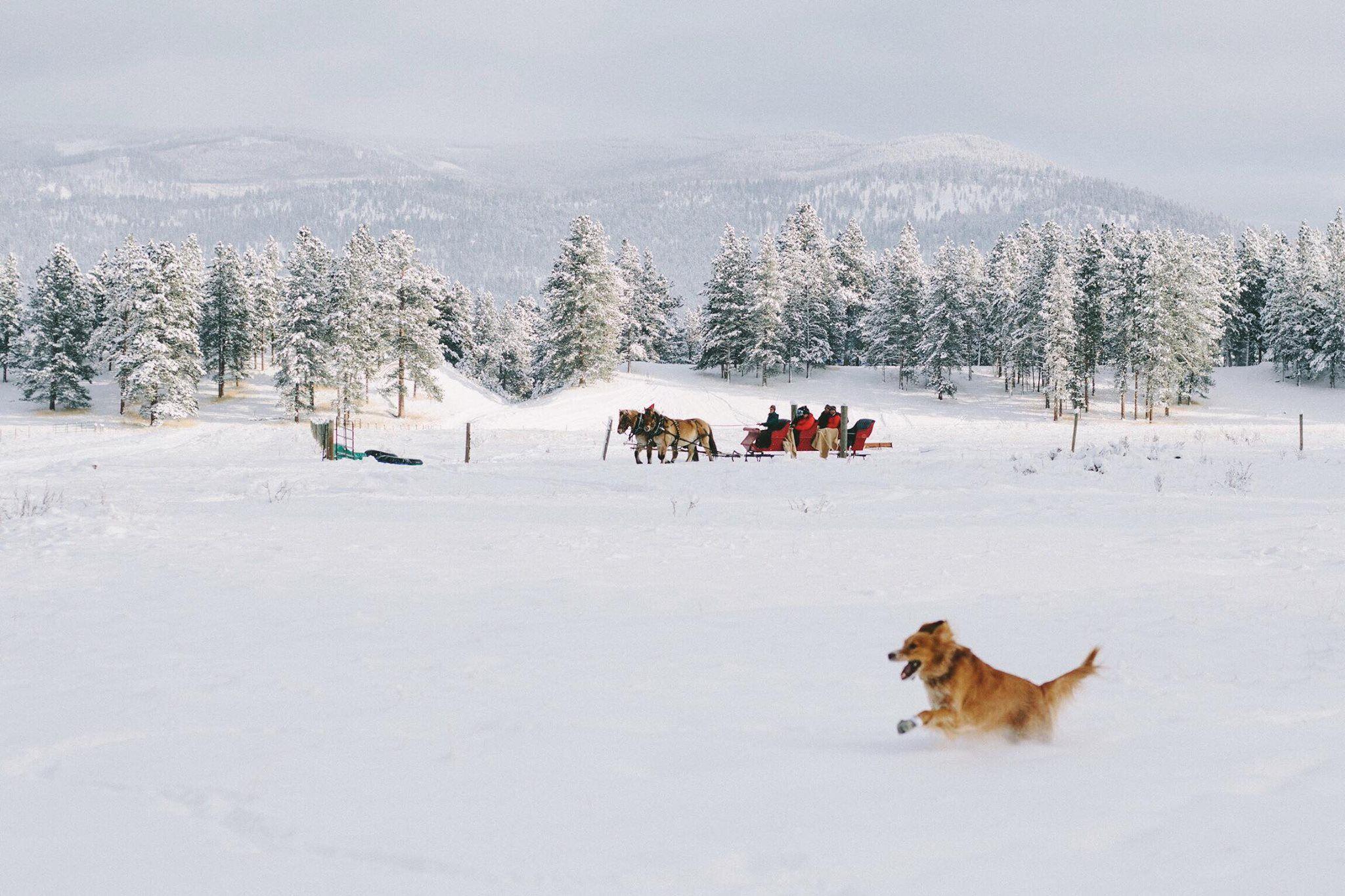 Christmas Travel   Montana Vacations   Christmas at Paws Up ...