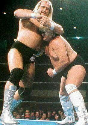 Hogan vs Dusty Rhodes | Pro wrestling, Wrestling stars, Professional  wrestling