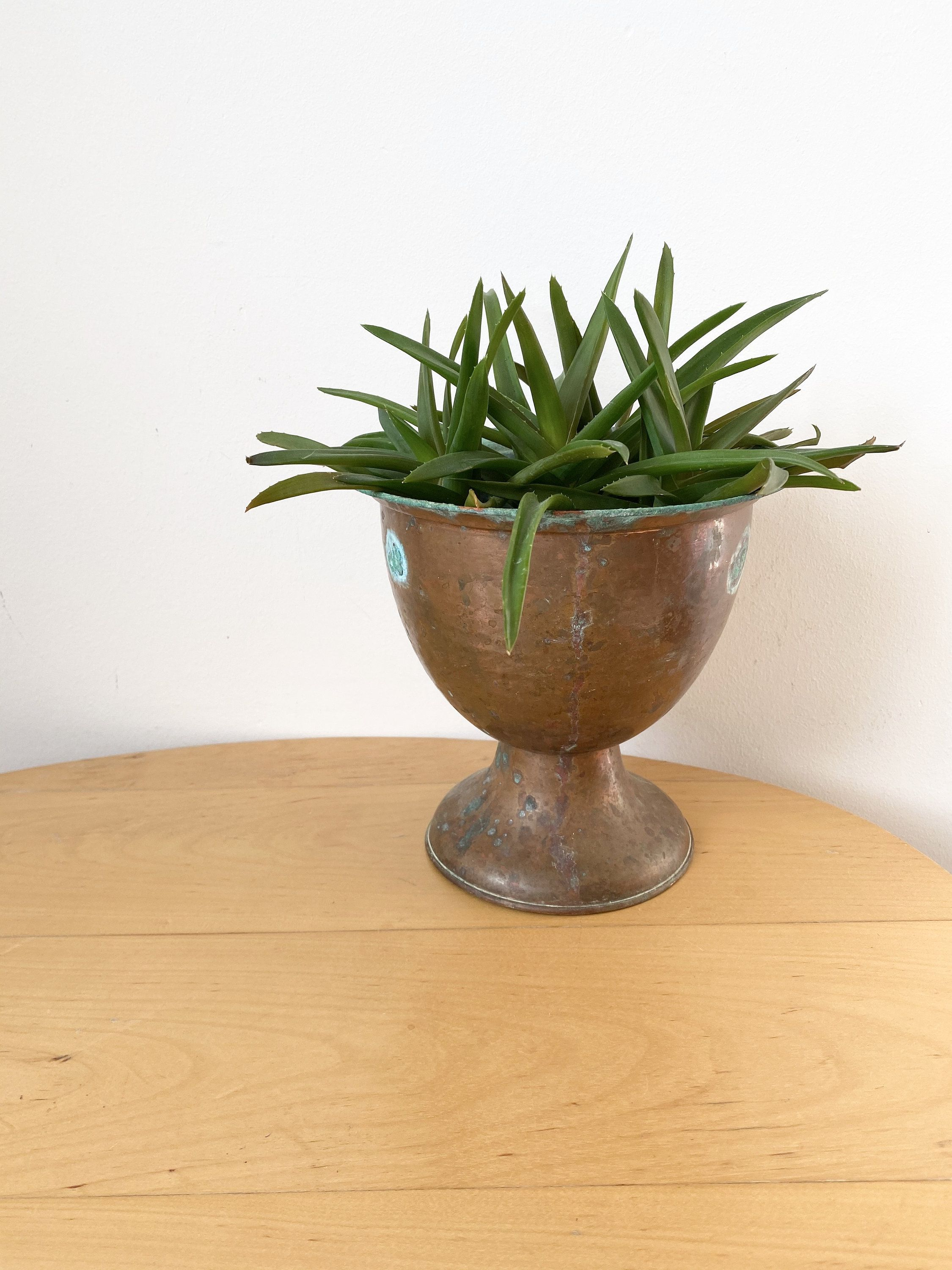 Pin On Planters Flower Pots