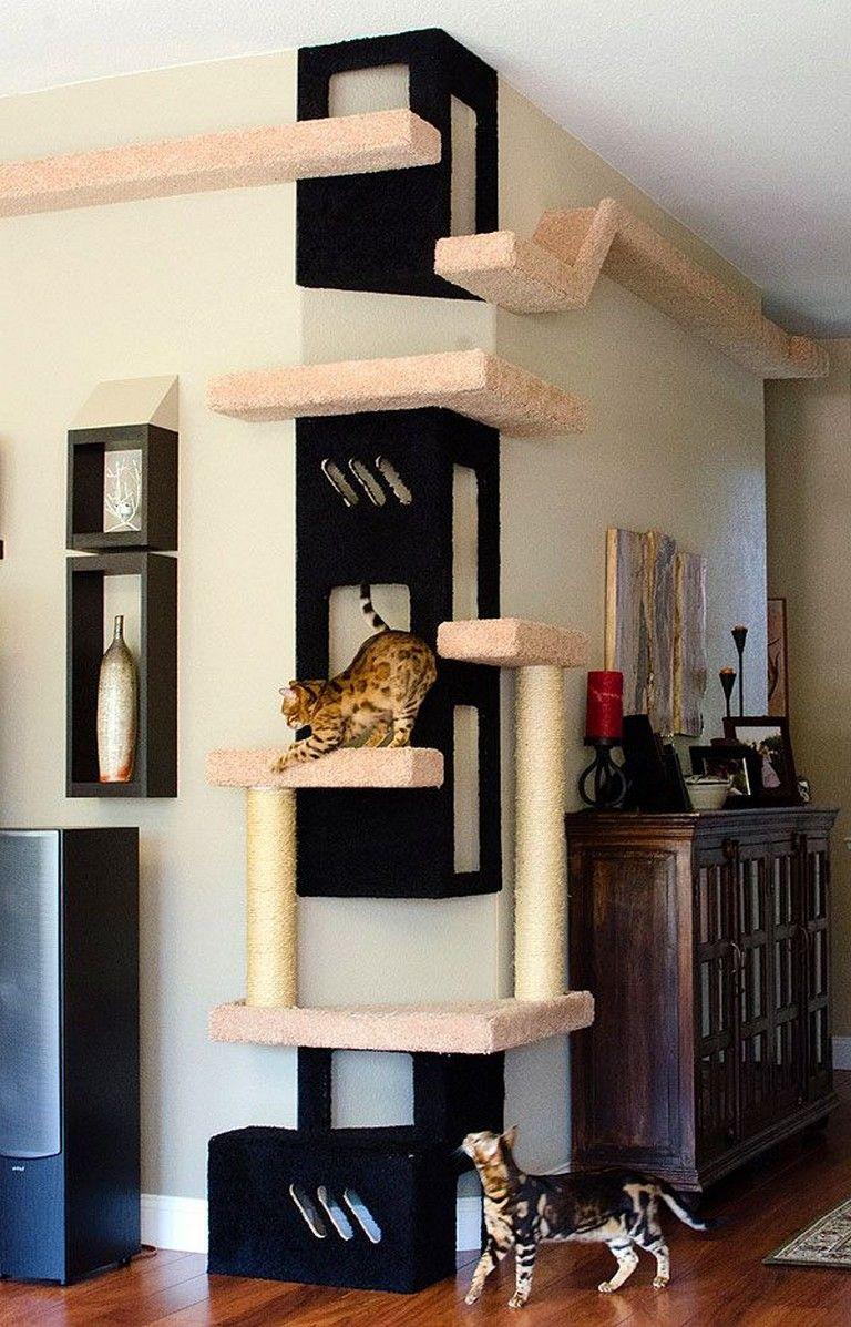 20 Amazing Cat Houses And Trees Ideas Cat Room Cat Furniture Cat Playground