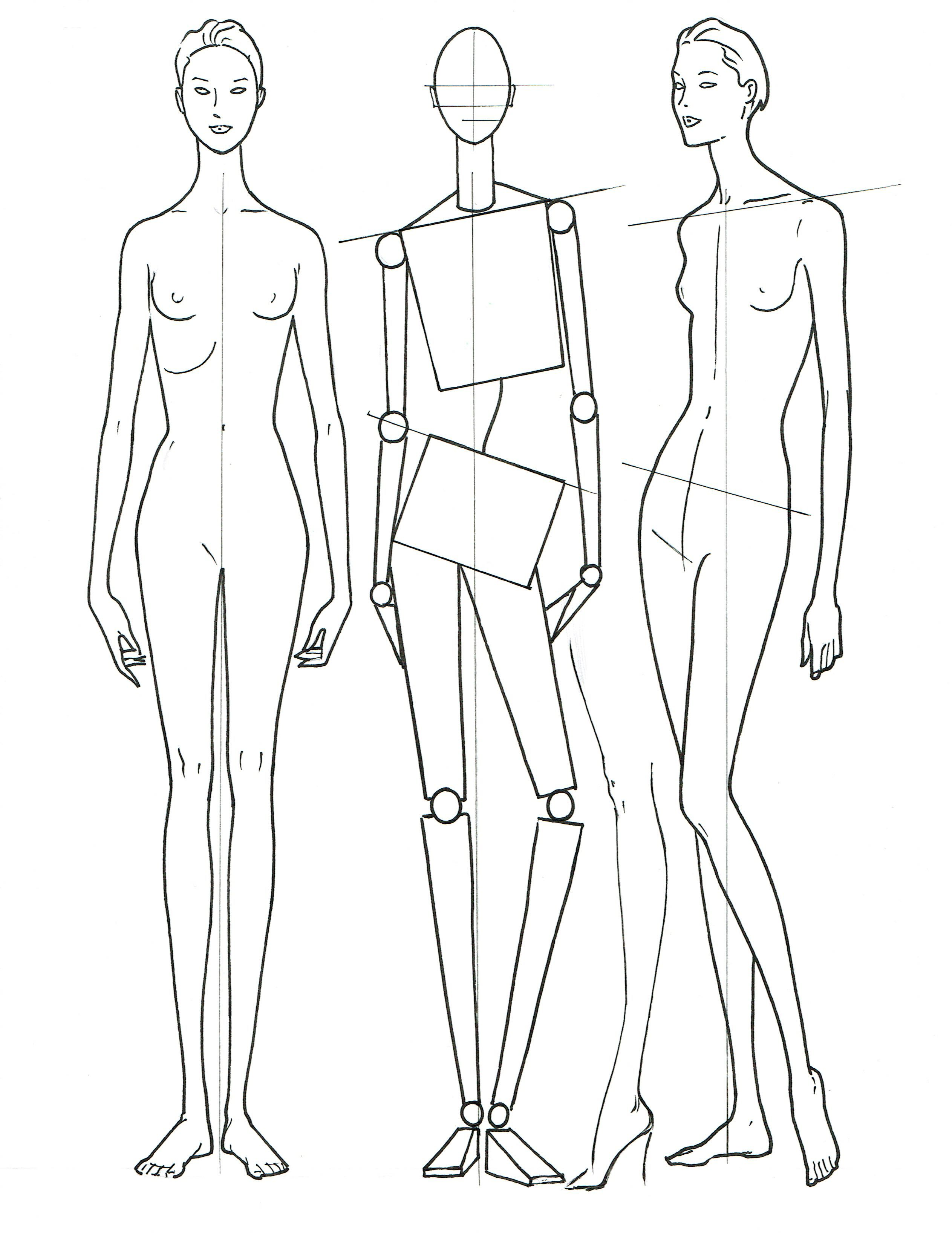 Women S Fashion Proportion Front And 3 4 View L O Neal Fashion Illustration Fashion Art Anatomy Sketches