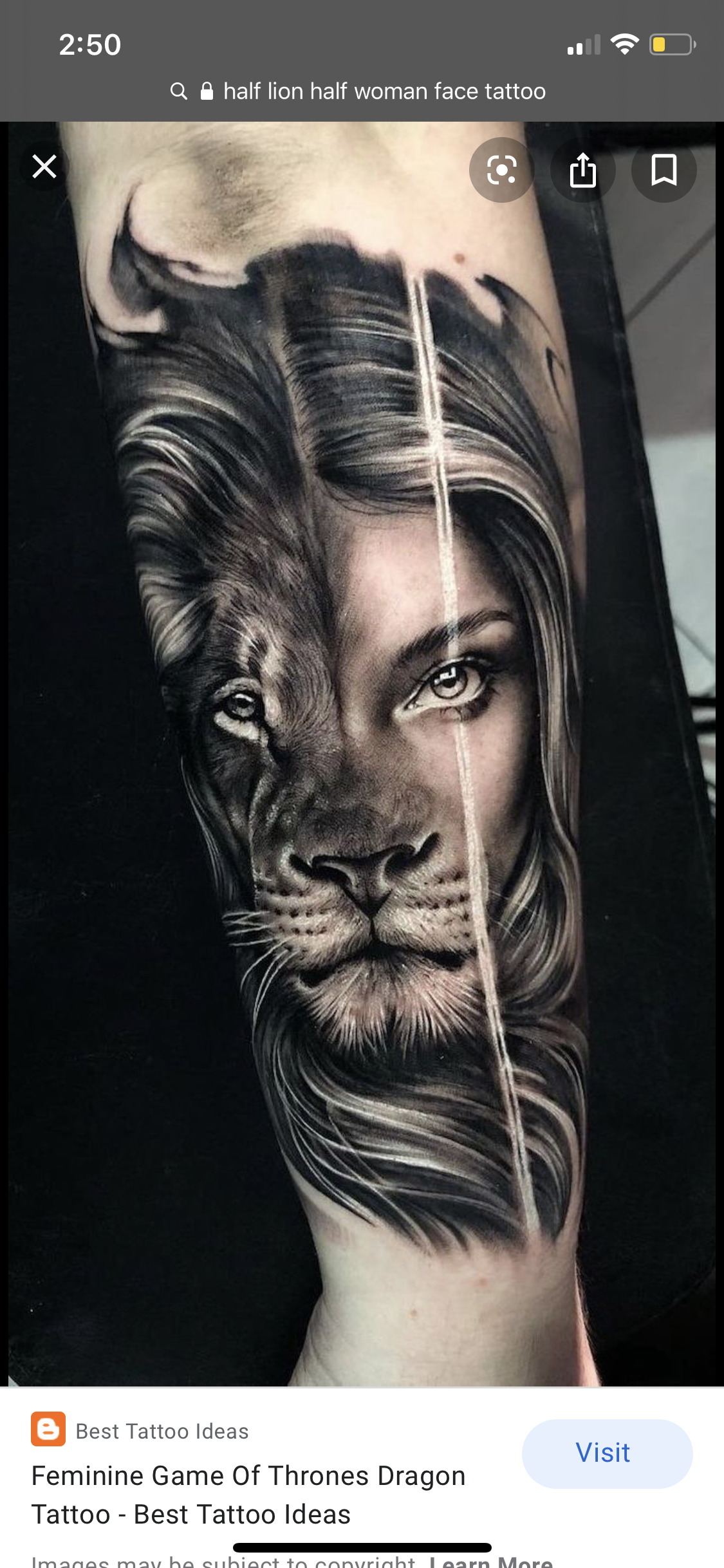 Pin By Ithzare Alejandra On Inked Lion Head Tattoos Lion Tattoo Sleeves Face Tattoos For Women