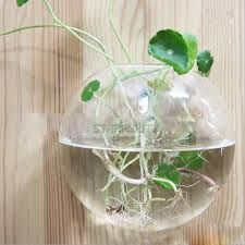 hanging glass planter - Google Search