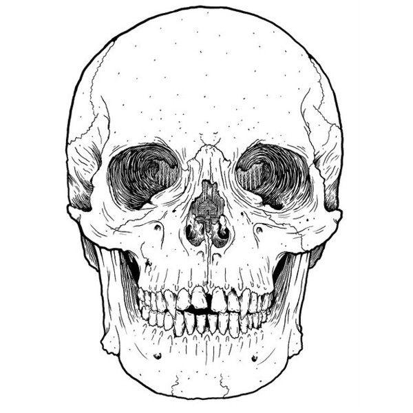 Pin By Mary Sabatini On Art Skull Sticker Autumn Stickers Skull