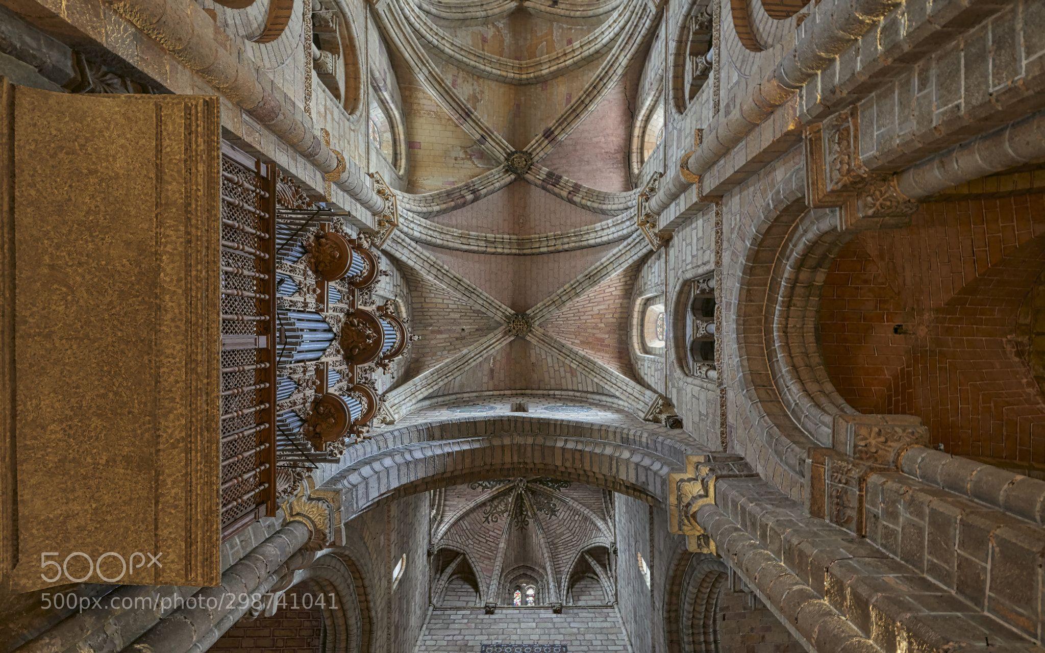 Basílica De San Vicente ávila Spainancientarchitecturebasilicabuildingburialceilingcentral Navecolonnadedecora Romanesque Architecture San Vicente Romanesque