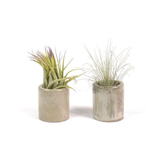 Mini Cylindrical Concrete Planter  Concrete by RichNeeleyDesigns, $7.00