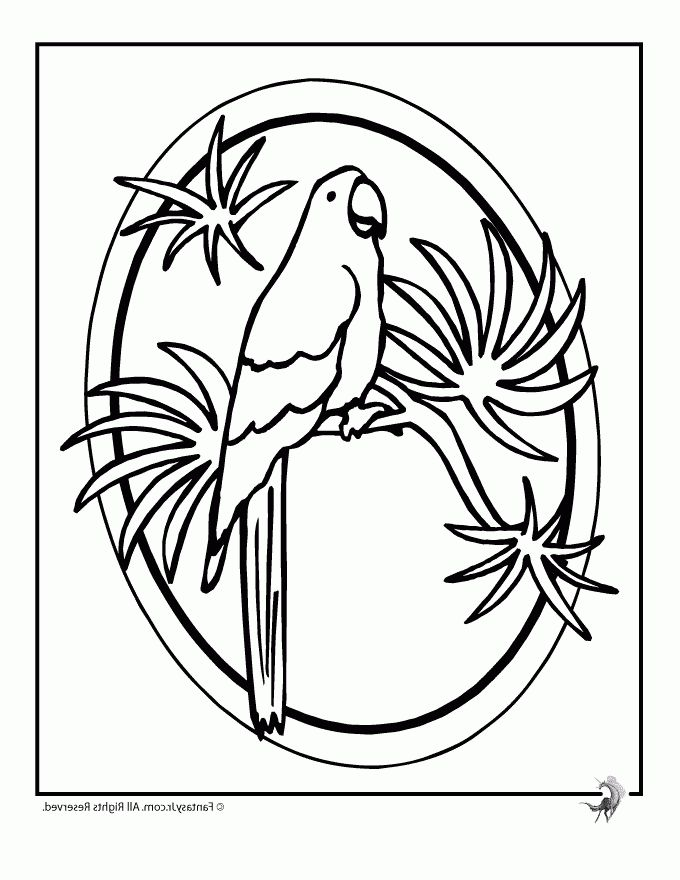 The Best luau coloring pages - http://coloring.alifiah.biz/the-best ...