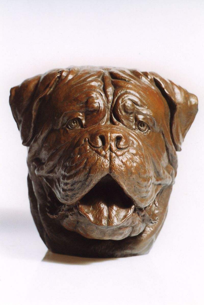 Dogue De Bordeaux Bronze Sculpture By Eskandar Magzub Dogue De Bordeaux Bronze Sculpture De Bordeaux