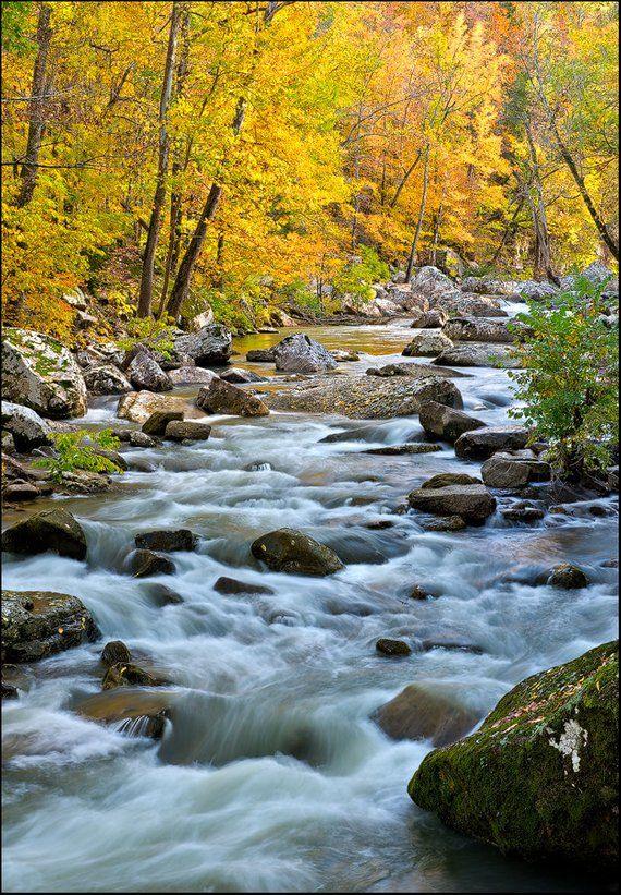nature photography fall foliage landscape creek stream 570 x 821 · jpeg