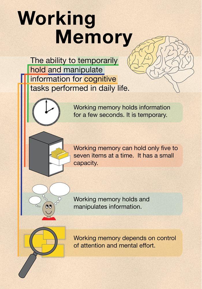 What Is Working Memory >> Understanding Working Memory Homeschool Working Memory