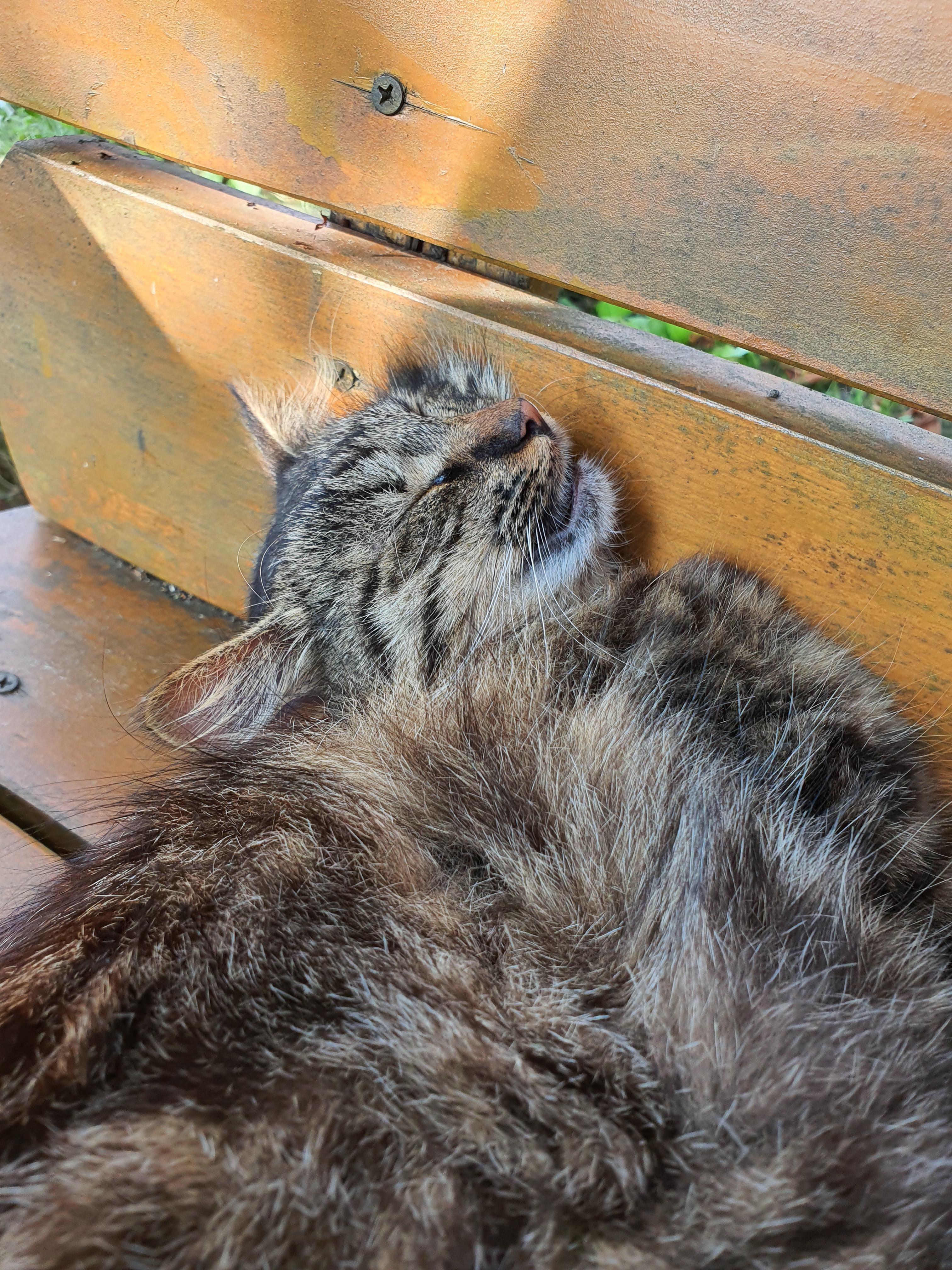 Sleepy kitty #Music #IndieArtist #Chicago #sleepykitty Sleepy kitty #Music #IndieArtist #Chicago #sleepykitty Sleepy kitty #Music #IndieArtist #Chicago #sleepykitty Sleepy kitty #Music #IndieArtist #Chicago #sleepykitty Sleepy kitty #Music #IndieArtist #Chicago #sleepykitty Sleepy kitty #Music #IndieArtist #Chicago #sleepykitty Sleepy kitty #Music #IndieArtist #Chicago #sleepykitty Sleepy kitty #Music #IndieArtist #Chicago #sleepykitty Sleepy kitty #Music #IndieArtist #Chicago #sleepykitty Sleep #sleepykitty