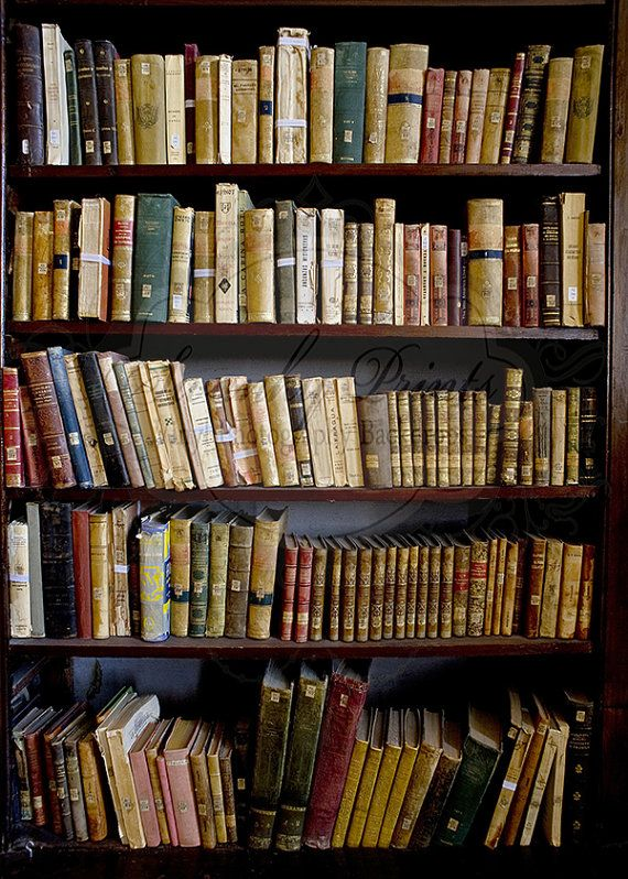 5ft X 7ft Vinyl Photography Backdrop Old Library Bookcase
