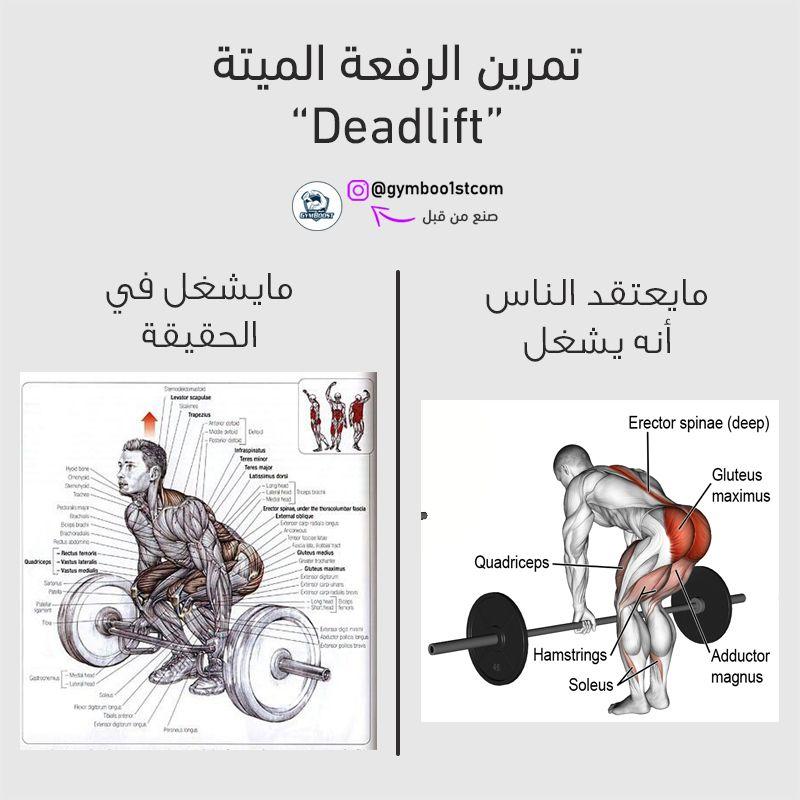 التمارين المركبة مثل الرفعة الميتة لديها القدرة على تفعيل العديد من العضلات في نفس الوقت وهذا مايجعلنا نوصي بها بشدة لزيادة الكتلة الع Ecard Meme Memes Ecards