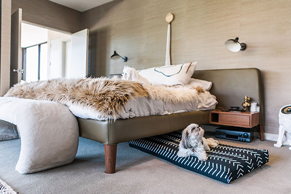 Inside The Stylish Homes Of Three Pet Parents Dog bed