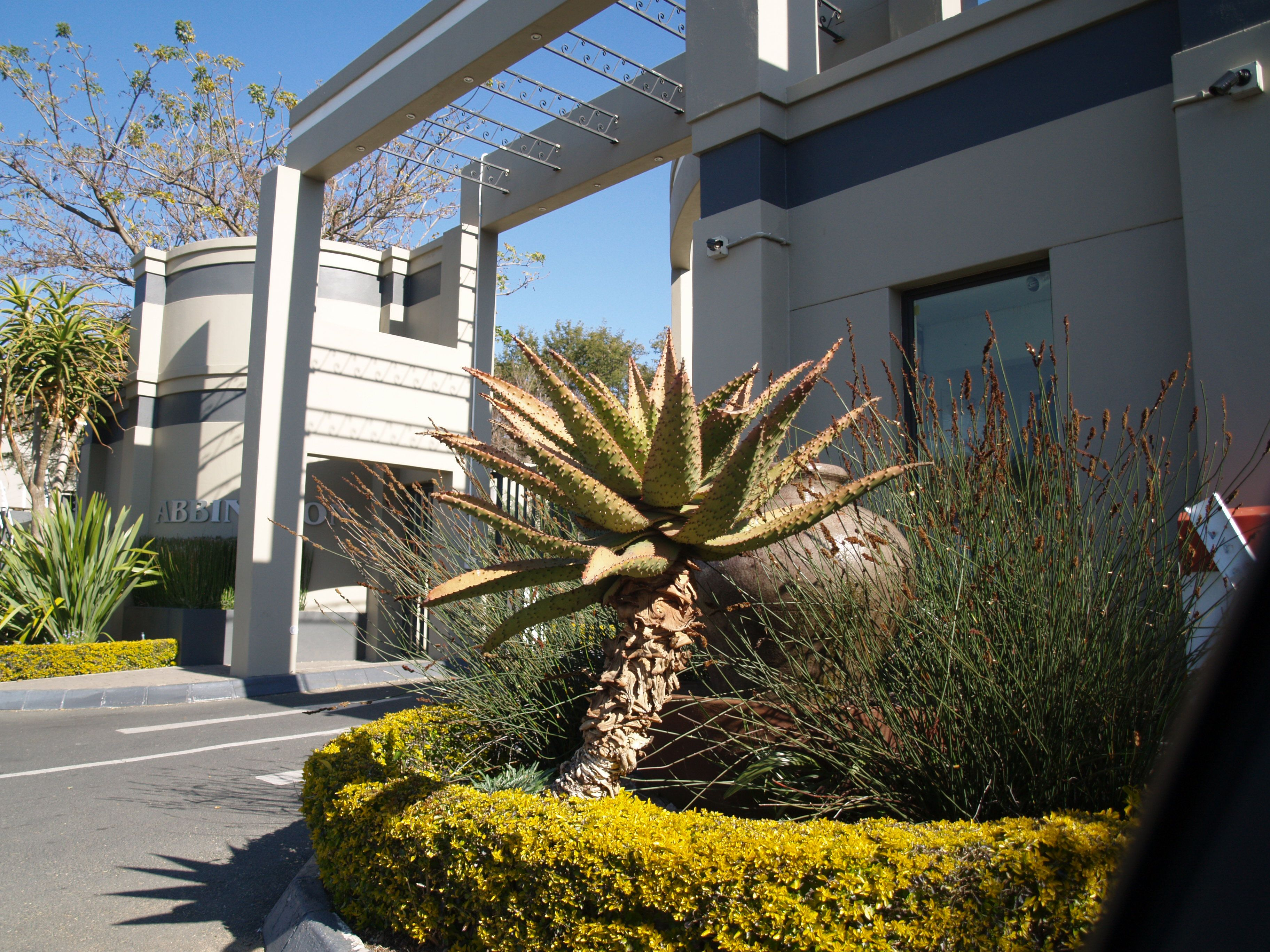 Dalberry Apartments - Dalberry Guesthouse Dalberry Guesthouse