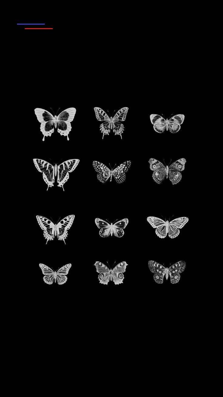 Loona X1x 2019 Wanddekor Lockscreen Hd Fondo Pantalla Vivi Yves Jinsoul Hase In 2020 Butterfly Wallpaper Iphone Lock Screen Wallpaper Iphone Background Wallpaper