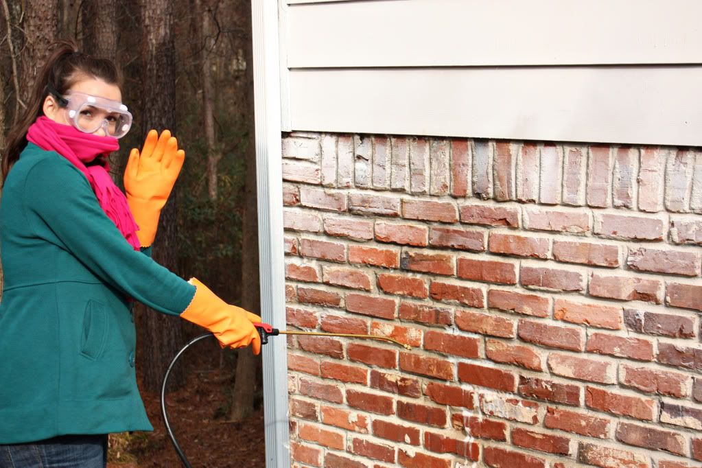 How to remove paint from exterior brick projects to try - How to clean brick house exterior ...