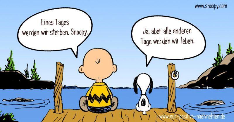 Eines Tages Werden Wir Sterben Snoopy Spruch Zitat
