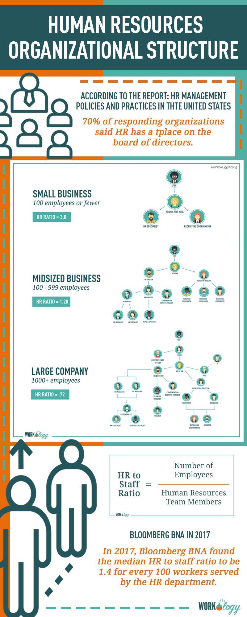 Human Resources Organizational Structures Organizational Structure Human Resources Hr Infographic
