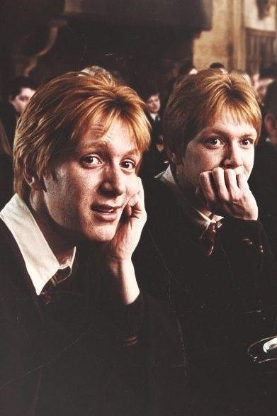 Fotos y memes de Harry Potter!  - Los gemelos