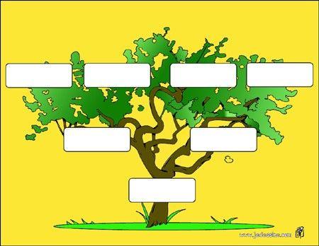 activités - comment faire ton arbre généalogique ? | arbre