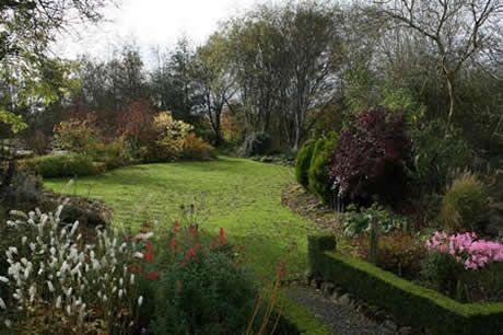 Ballyrobert Cottage Garden County Antrim Northern Ireland Irish Garden Cottage Garden Garden Landscaping