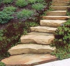 Landscaping St Louis Brown Natural Stone Steps With Plantings