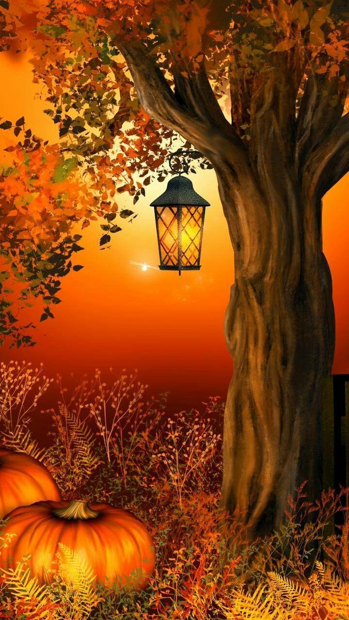 ☮ * ° ♥ ˚ℒℴѵℯ cjf #autumnscenes ☮ * ° ♥ ˚ℒℴѵℯ cjf #autumnscenery ☮ * ° ♥ ˚ℒℴѵℯ cjf #autumnscenes ☮ * ° ♥ ˚ℒℴѵℯ cjf #autumnscenes