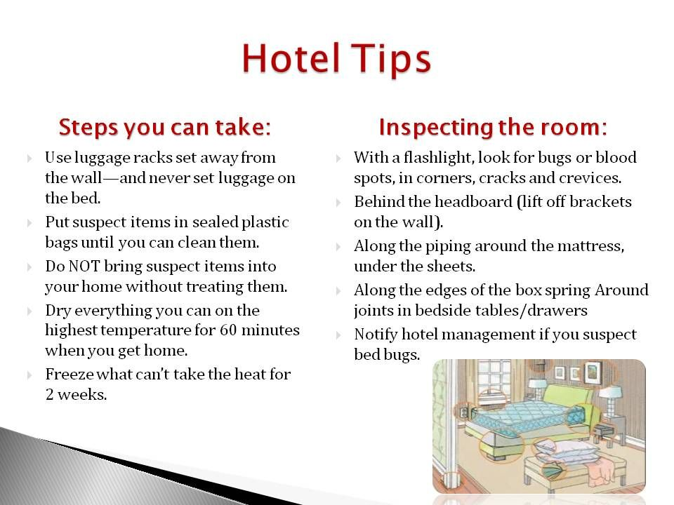 Use These Hotel Tips To Remain Bed Bug Free During Your Travels