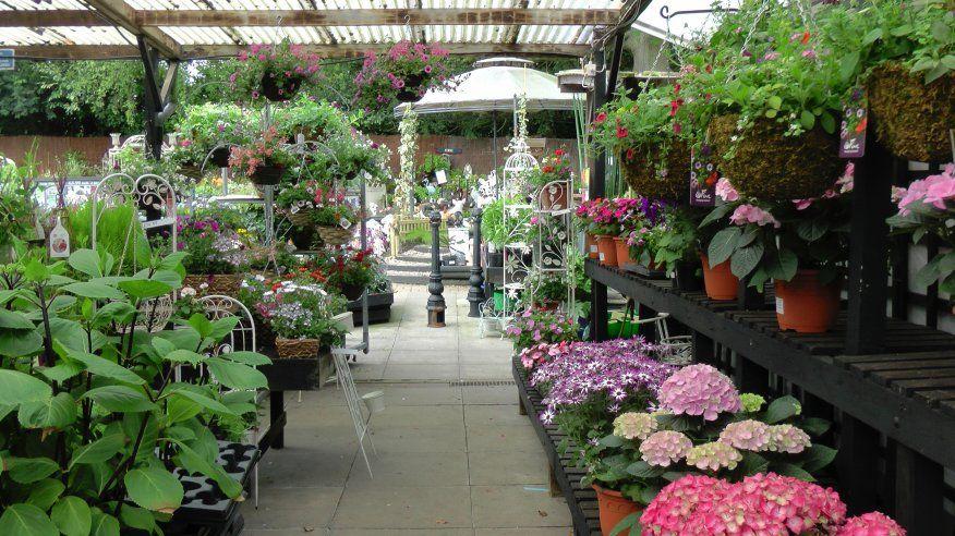 garden centre display | Garden Shop/Nursery/Flower Shop | Pinterest ...