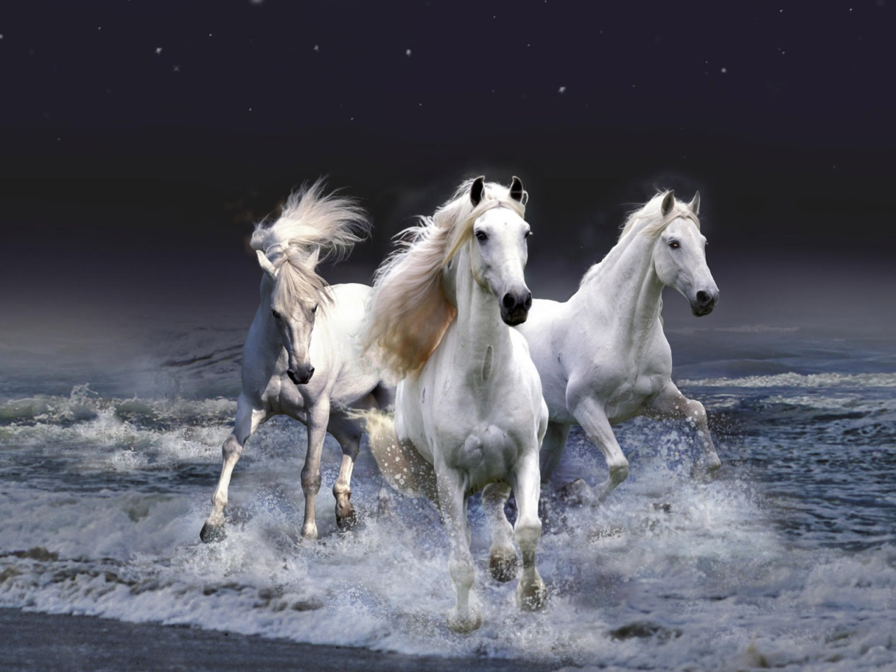 Its A Beautiful White Horse Painting Where The Color Combination