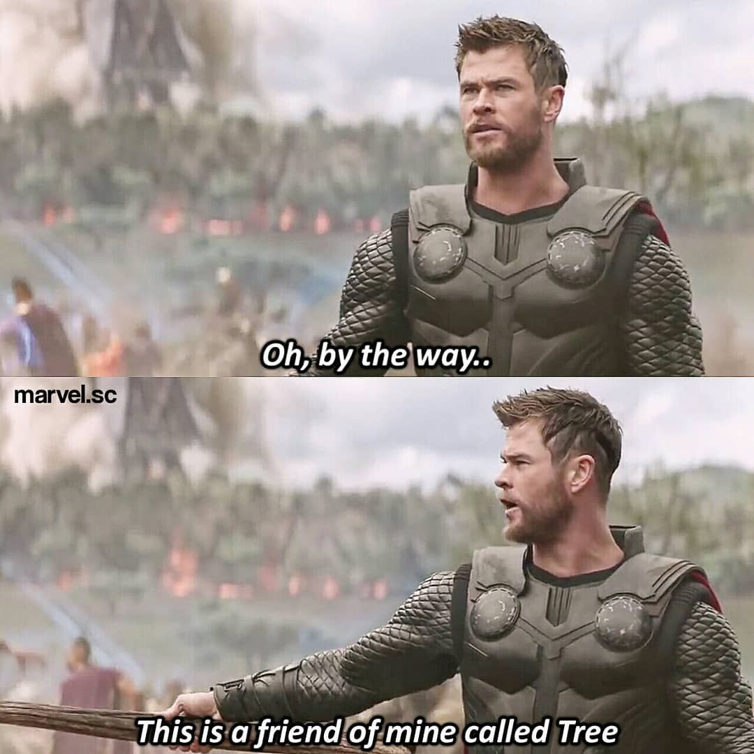 Thor Groot Infinity War Avengers Funny Avengers Pictures Thor Funny