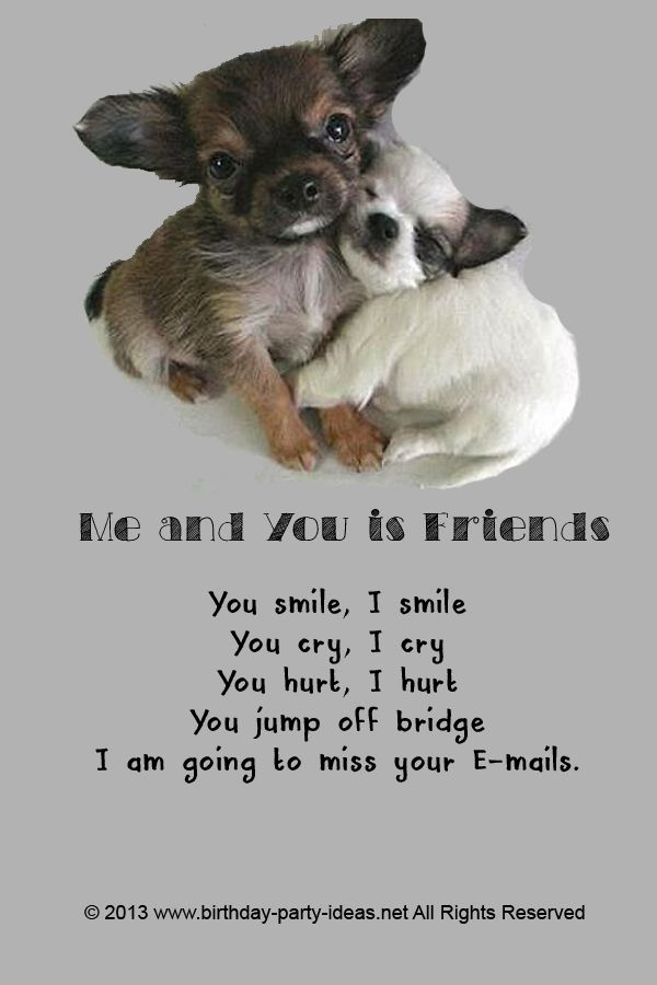 Cute Friendship Quotes You Can Put In Birthday Card For Your Friends Saying