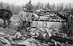 2 Weltkrieg Bilder Des Todes