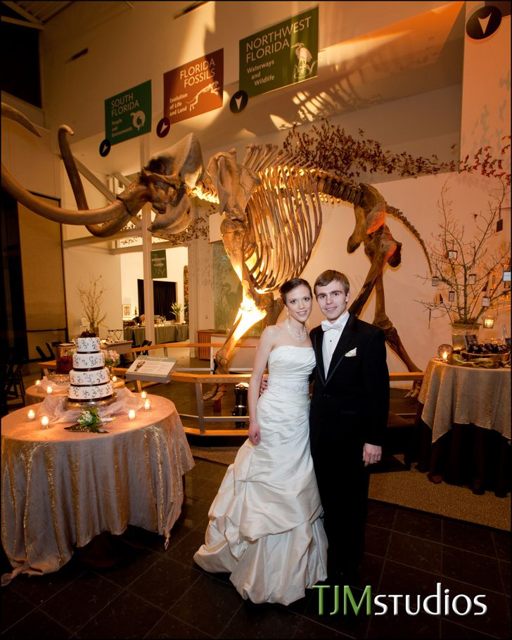 Awesome Wedding Reception At The Florida Museum Of Natural