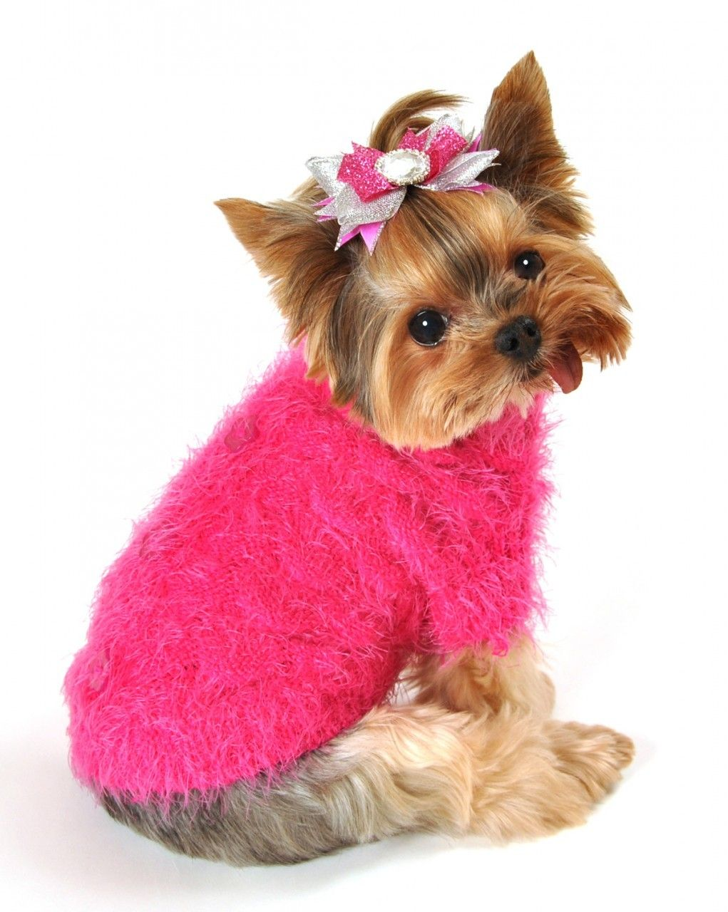 I Am Excited To Announce A New Line Of Sweaters For The Upcoming Season Coming Soon To Teacup Tutu Charm Stay Tuned For Up Dog Sweaters Diy Dog Sweater Doggy